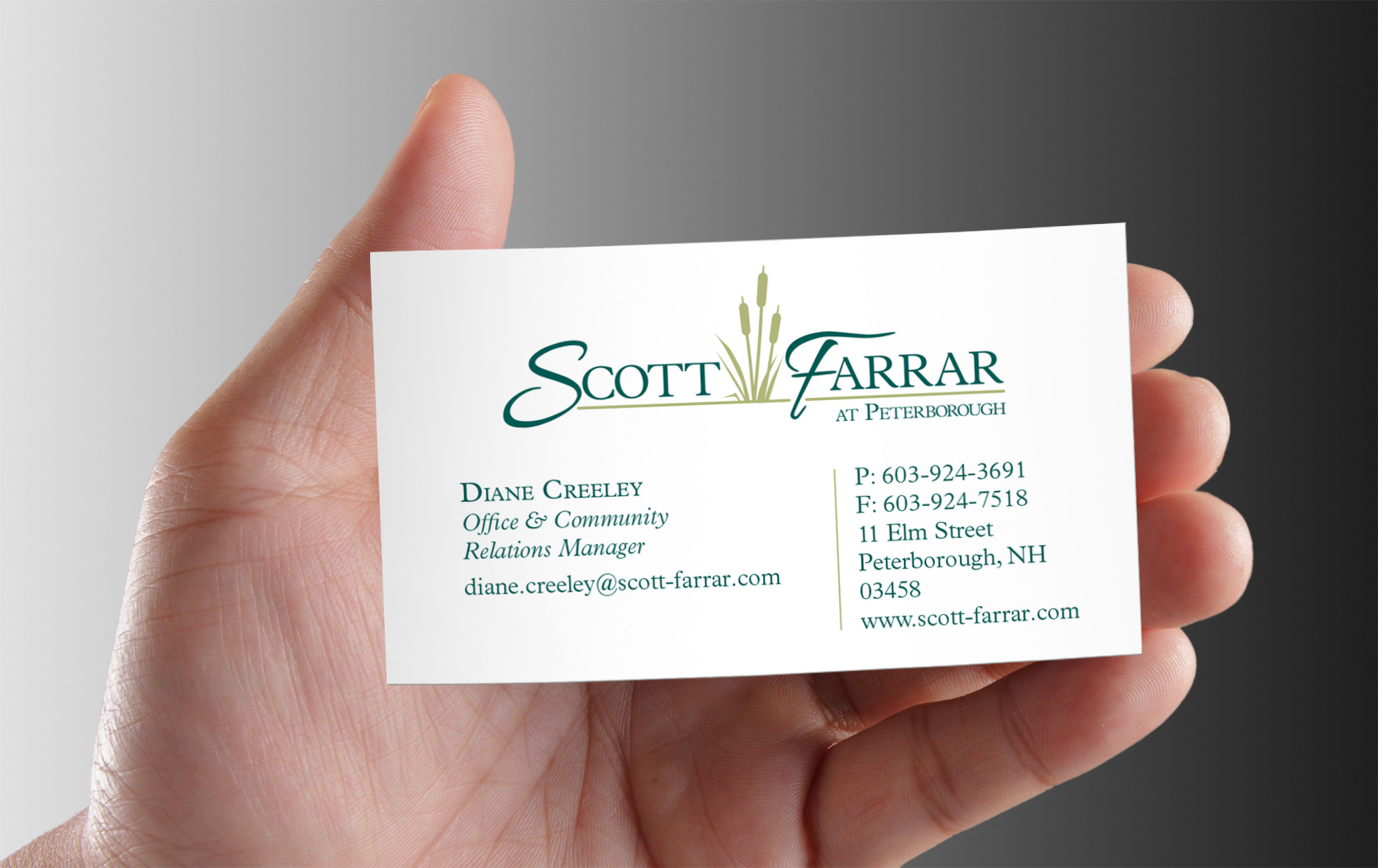 Lovely Business Seniors Card Photos - Business Card Ideas - etadam.info